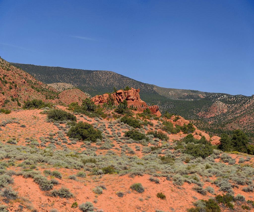 Fine Art Nature Photography/WPL/USA/Utah/Pine Valley ...